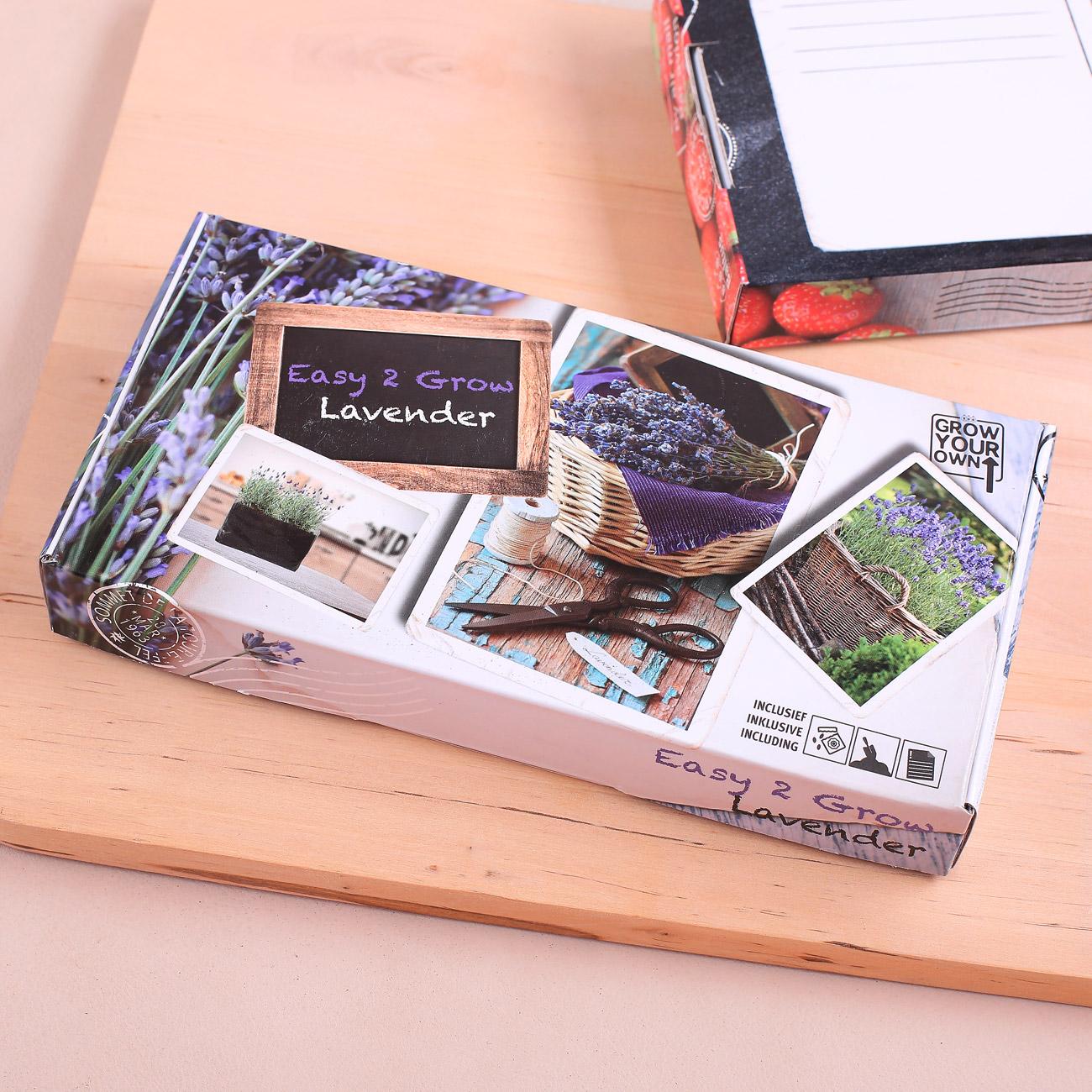 lavendelpflanze zum selber s en geschenke. Black Bedroom Furniture Sets. Home Design Ideas