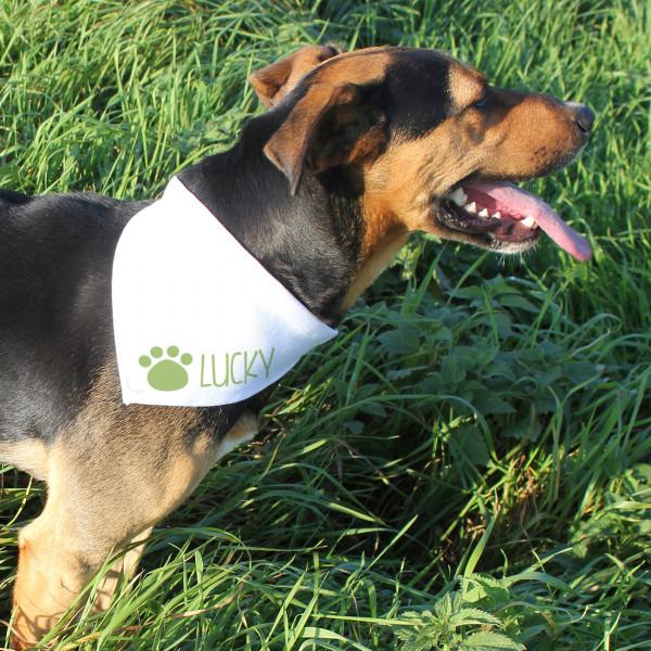 Halstuch für Hunde mit grüner Pfote und Name