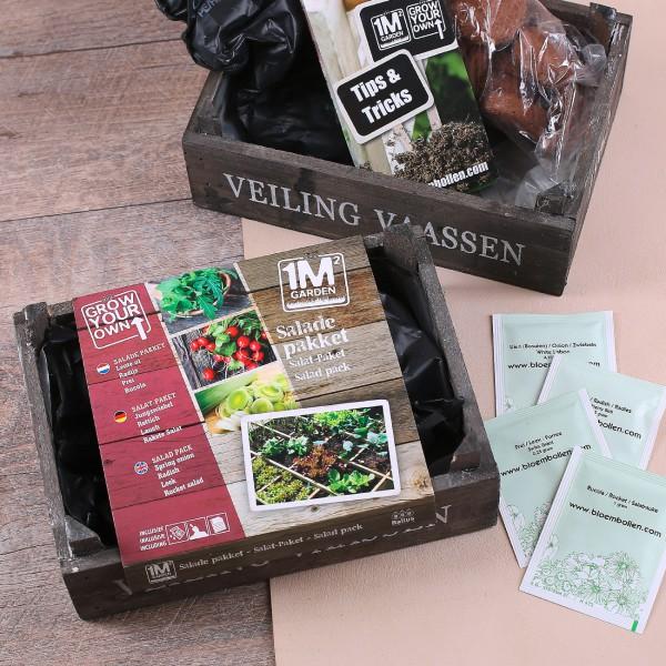 Salat Paket zum selber säen