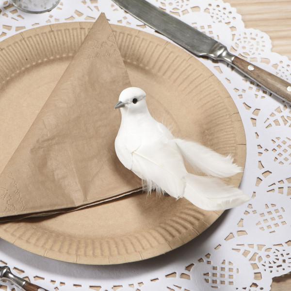 Weiße Taube mit Klammer