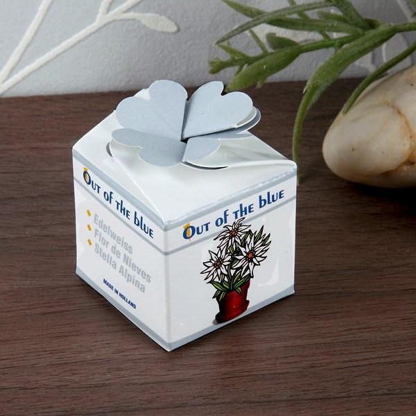 Edelweiss-Schächtelchen für Zuhause