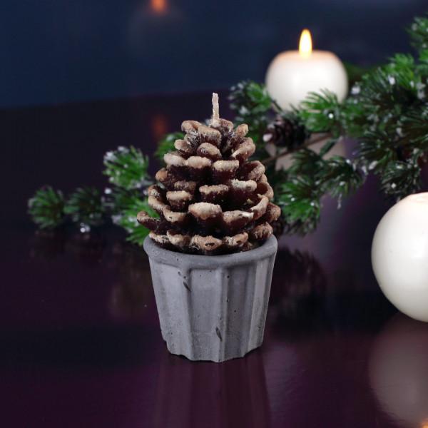 Tannenzapfen in braun als Kerze mit Zementtopf