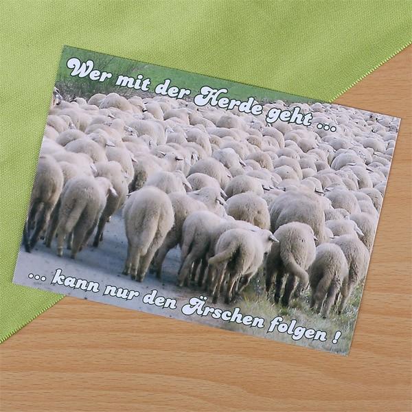 Postkarte mit Schafen