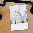 Karte - Aufrichtige Anteilnahme - Nature Card