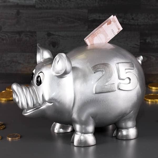 Riesen Sparschwein - 25 - silbern