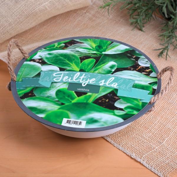 DIY Set mit Schale für Feldsalat