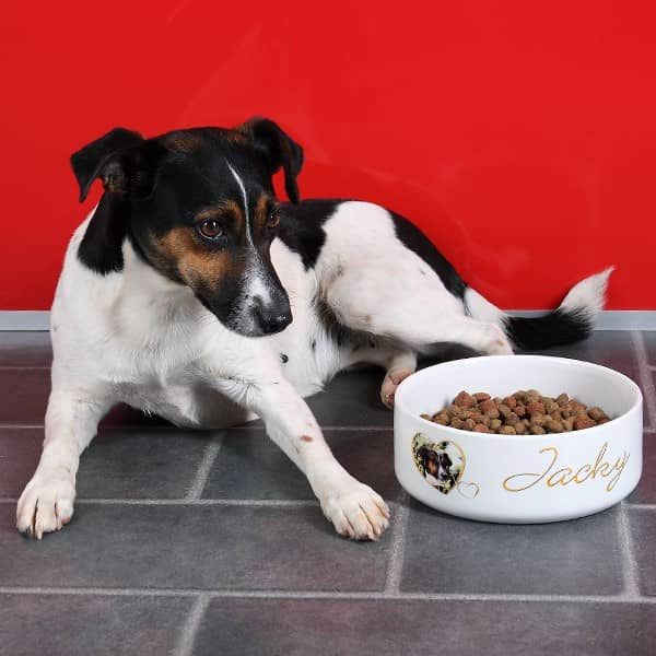Hundenapf mit Name und Foto