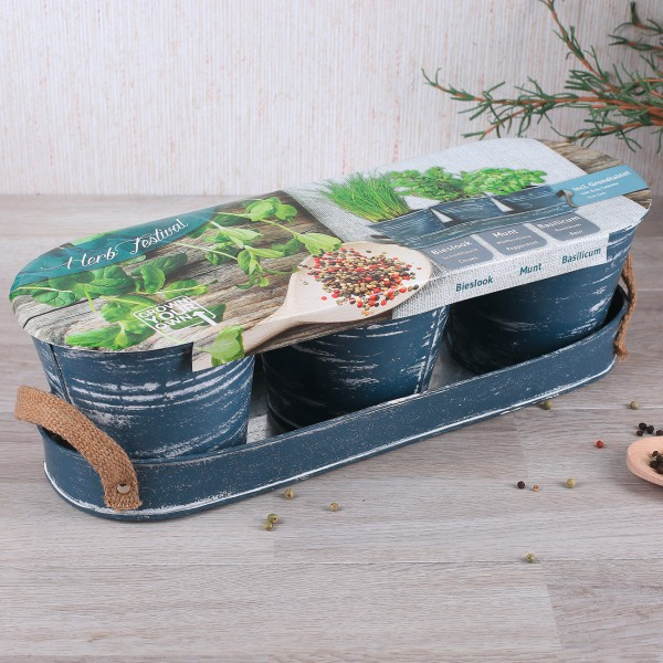 DIY Mini Kräutergarten für die Wohnung