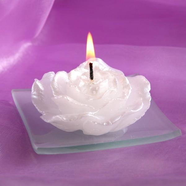 weiße Rose als Kerze